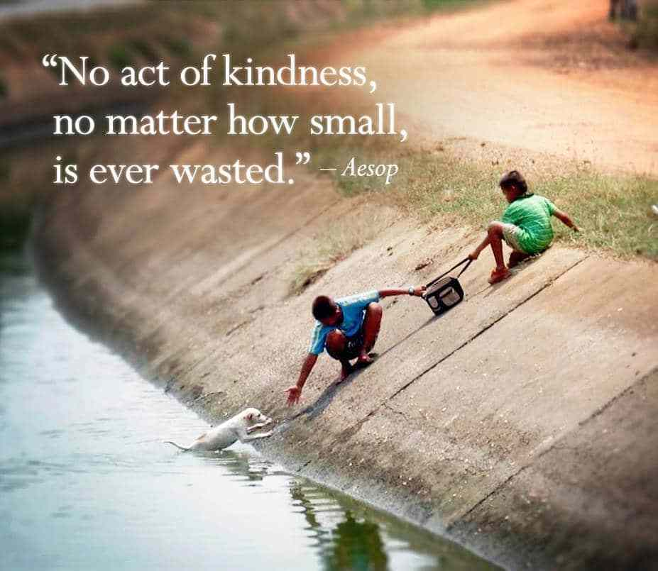 Kindness makes you the most beautiful person